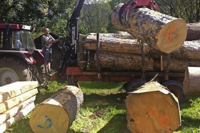 Holz für Künstler ist bereit