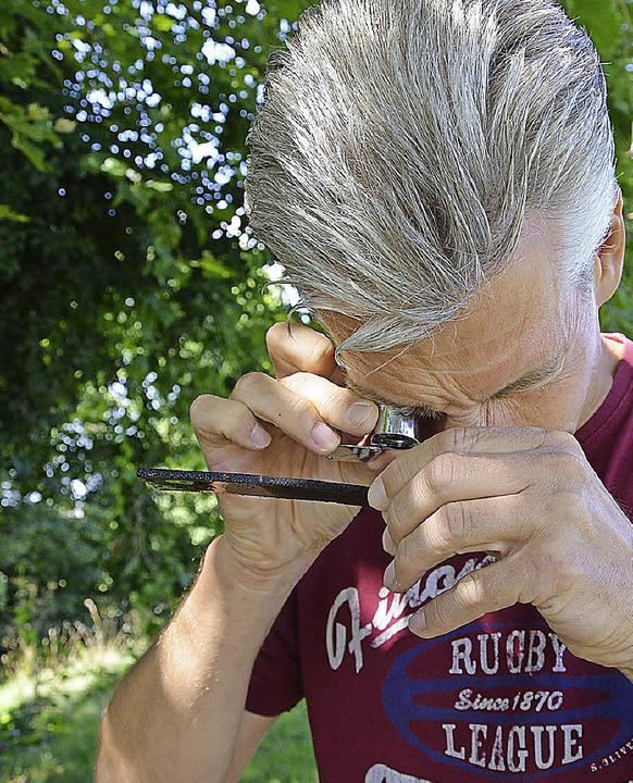 Artur Jöst auf der Suche nach Eiern des Tigermoskitos     Foto: Meyer/BZ