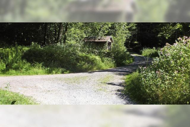 Kohlwaldhütte bei Tennenbach ist 120 Jahre alt