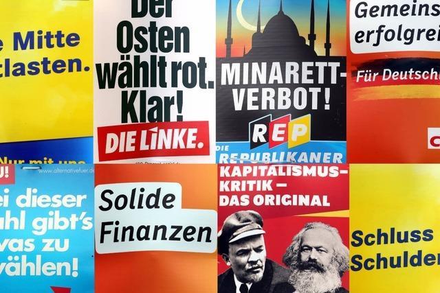 Bundestagswahl 2013: Die schrägsten Wahlwerbespots