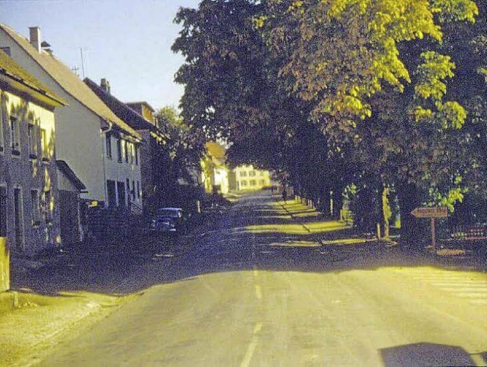 Vom Germania-Eck stadteinwärts war die...n einer prächtigen Baumallee gesäumt.   | Foto: Archiv Hany