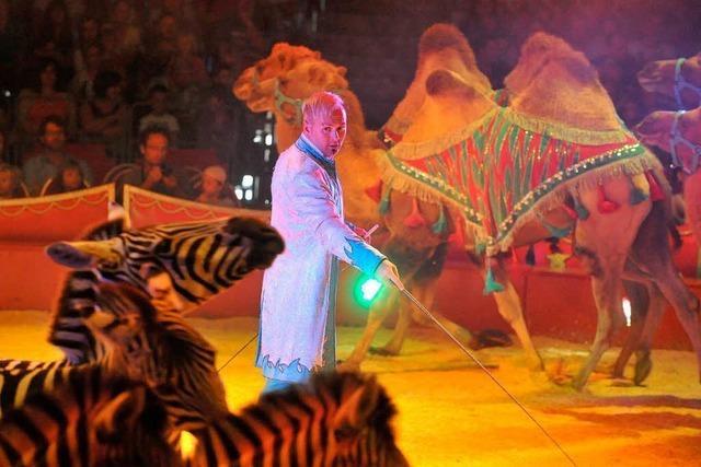 Zirkus Charles Knie in Freiburg: Die hohe Kunst