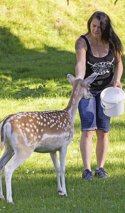 Die Tiere haben Vertrauen zur Tierpflegerin Eva Morath.    Foto: Seifried