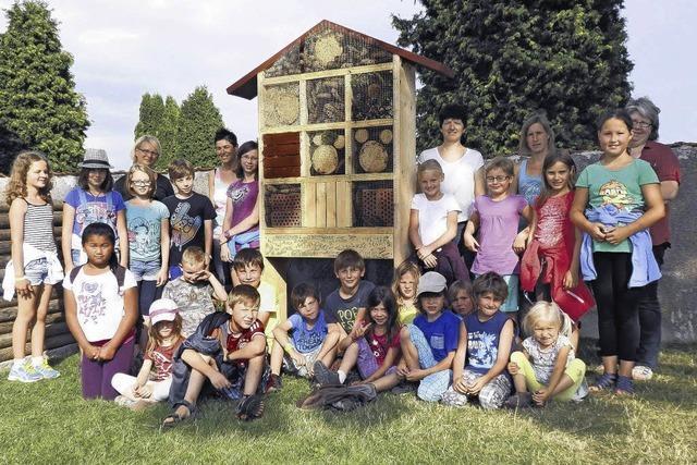 Ein Hotel für Schmetterlinge und Bienen