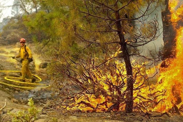 Yosemite-Park: Die Feuerwand rückt näher