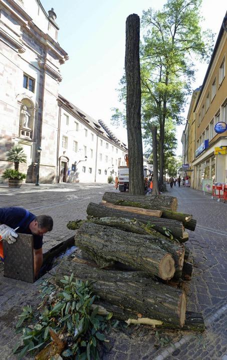 Bäume zu Brennholz: Arbeiten an der Bertoldstraße   | Foto: Michael Bamberger