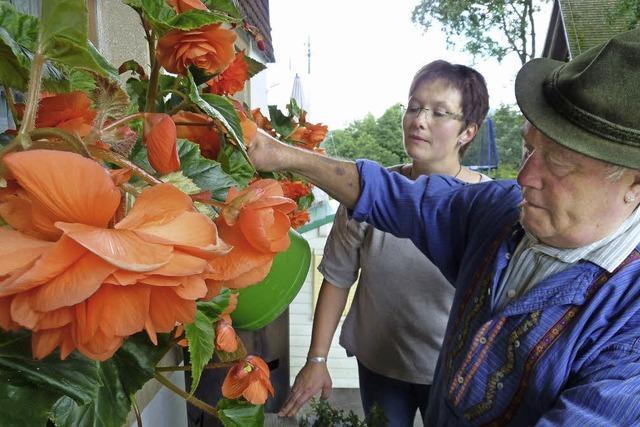 Frauensache Blütenpracht