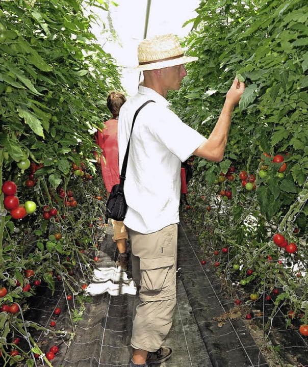 Genau schauten Erzeuger und Lieferante...der  Gärtnerei Piluweri informierten.   | Foto: Dorothee Philipp