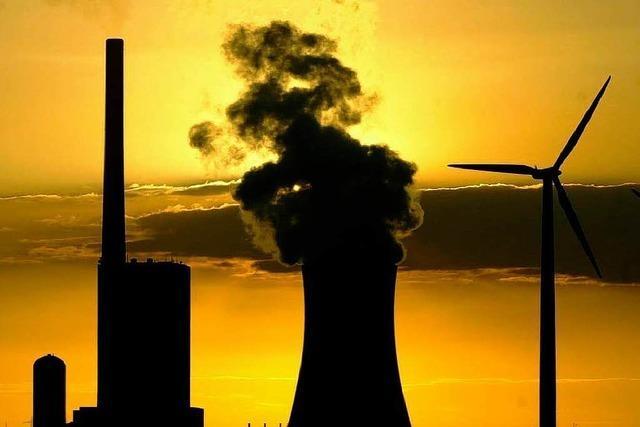 Umweltverbände können künftig leichter klagen