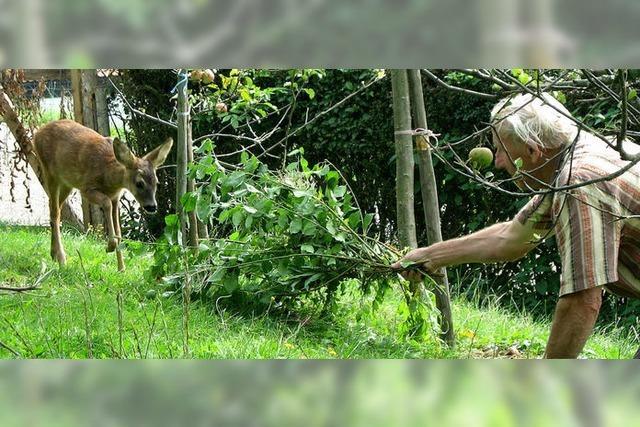 Fläschchen für zwei Bambis