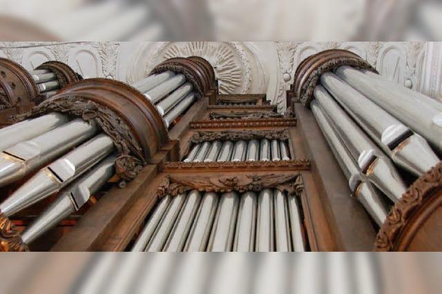 Orgel sensibel ausgelotet