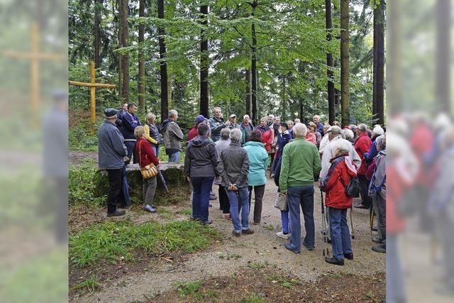 Interesse an letzter Ruhe im Wald