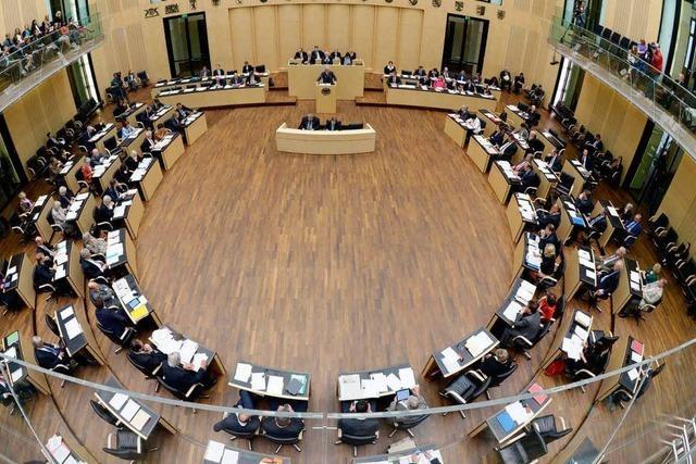 Der Bundesrat kippt vier Gesetzesvorhaben
