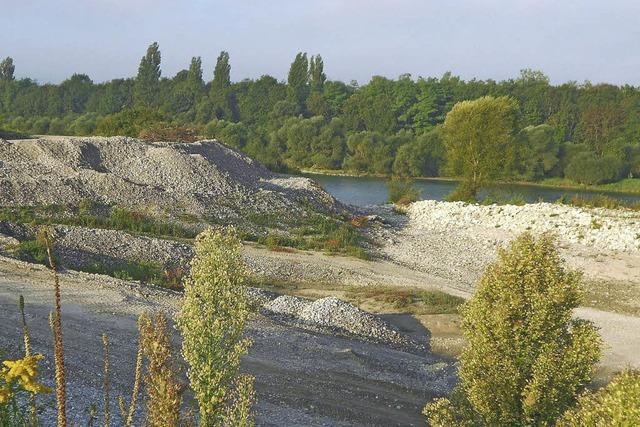 Die Auskiesung am Rhein steht still