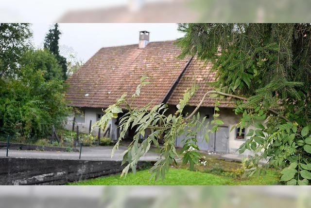 Bauland in Obersäckingen