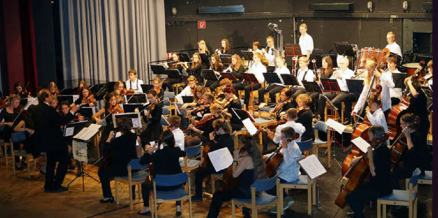 Das Symphonieorchester der Musikschule...erland unter Leitung von Ingo Balzers.    Foto: Hartenstein