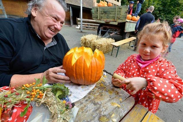 Kürbisfest auf dem Mundenhof: Schnitzen und Schlemmen