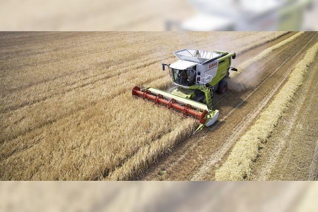 Landwirte erwarten leichtes Plus