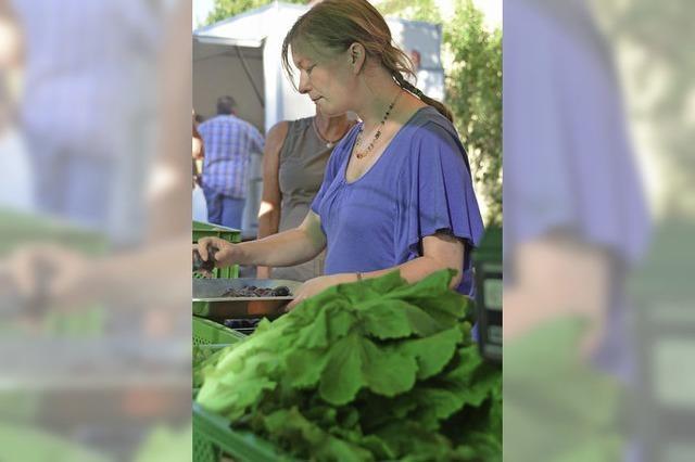 Dem Gemüse beim Wachsen zugucken