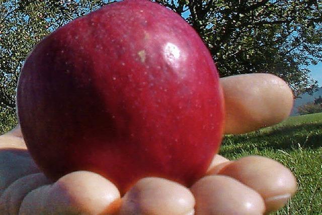 BUND kauft Äpfel auf