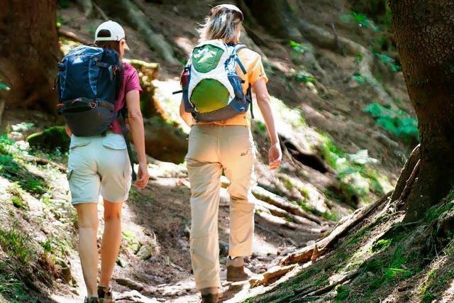 Majestätische Wanderung – Auf dem Rennsteig durch Thüringen