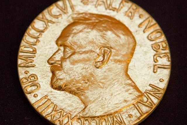 Anti-Chemiewaffen-Organisation erhält Friedensnobelpreis