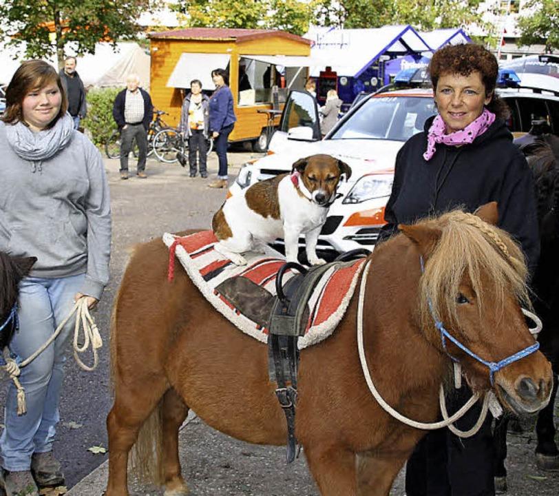 Ponys vom Erlenhof waren für die jungen Besucher  eine besondere Attraktion.    Foto: Andreas Peikert
