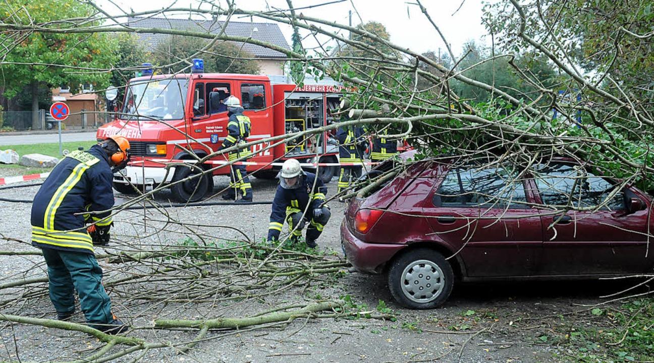 Hier ein umgestürzter Baum, andernorts...Anspruchsvolle Großübung in Schwanau.   | Foto: wolfgang künstle