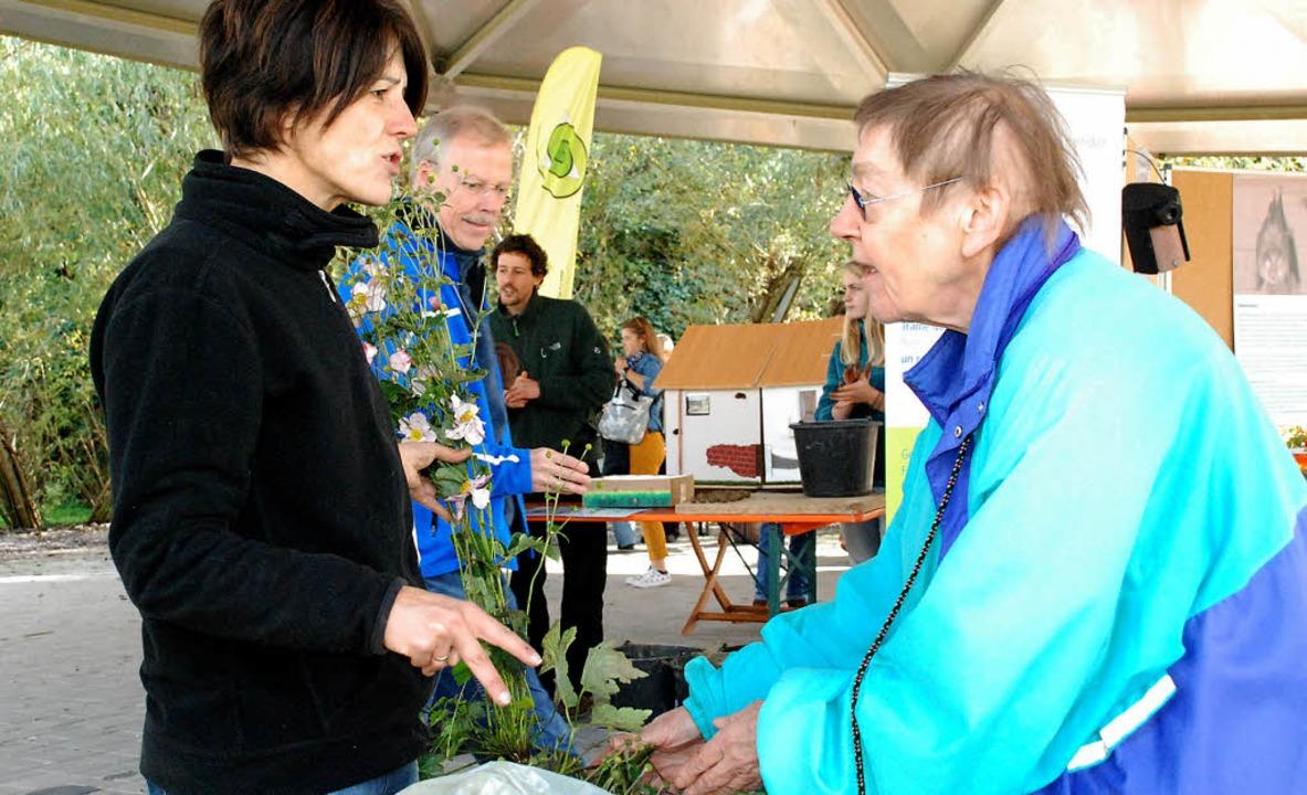 Ursula Philipps fachsimpelt mit einer Besucherin des Pflanzenflohmarkts.     Foto: Maja Tolsdorf