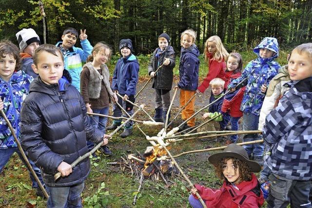 Schweizer Gäste in den Wald geführt