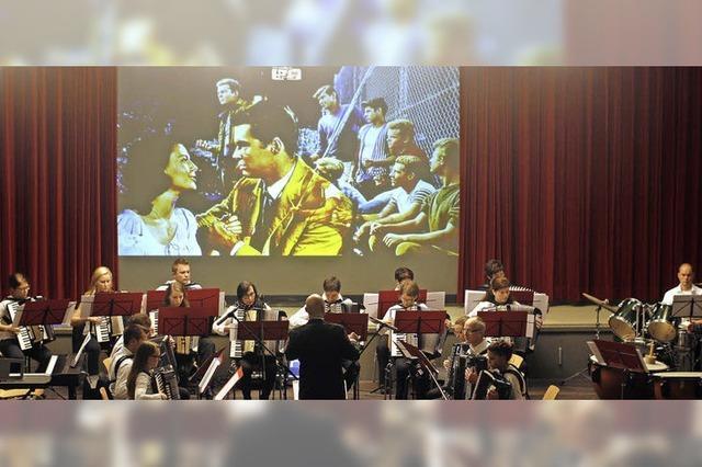 Musical auf dem Akkordeon