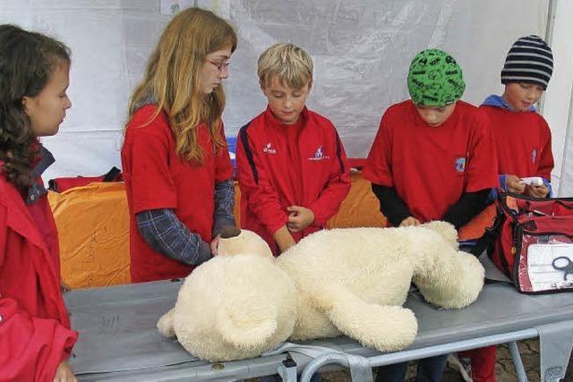 Nachwuchs übt Retten am Teddy
