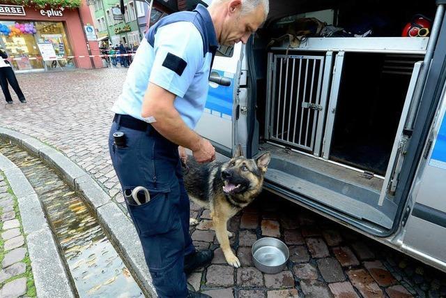 Uras schnüffelte im Freiburger Rathaus nach Sprengstoff
