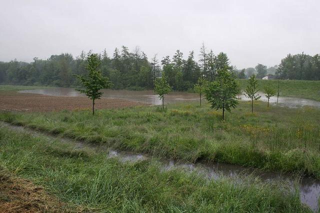 Hochwasserschutz hat sich bewährt