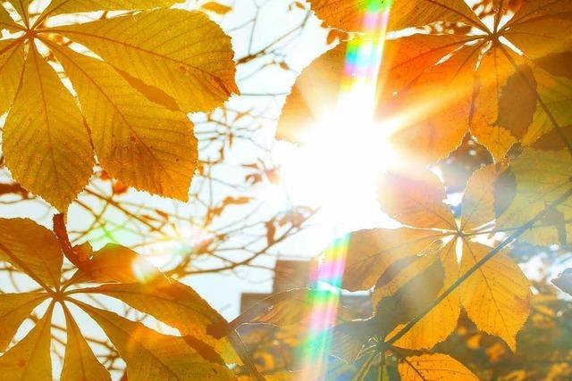 25,4 Grad – Ende Oktober ein Sommertag