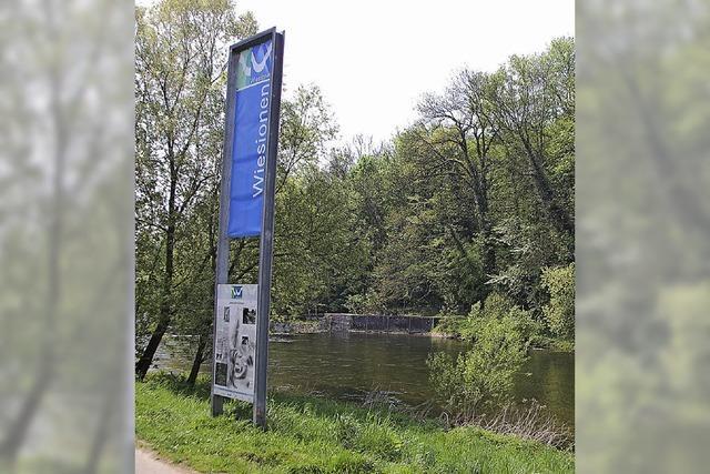 Wiesionen bringen den Fluss in die Stadt zurück