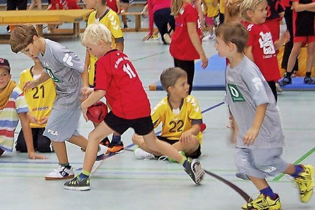 Hummeln bieten Handball und Halloween