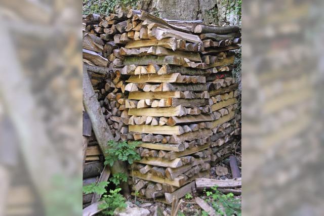 Räubern im Wald findet nicht statt