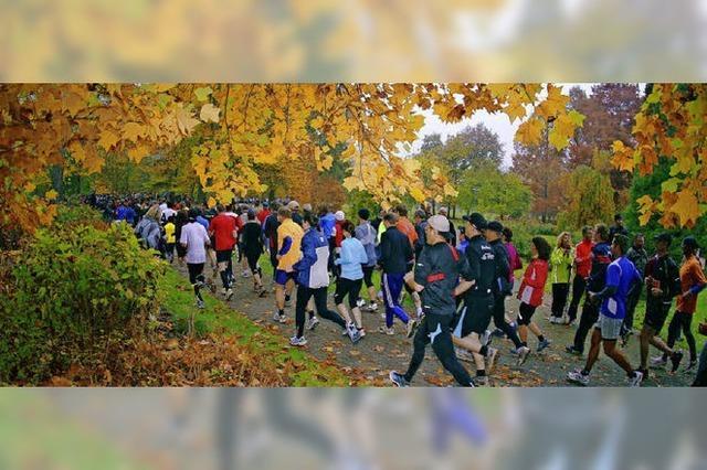 Bambini und Halbmarathonläufer auf raschelndem Herbstlaub