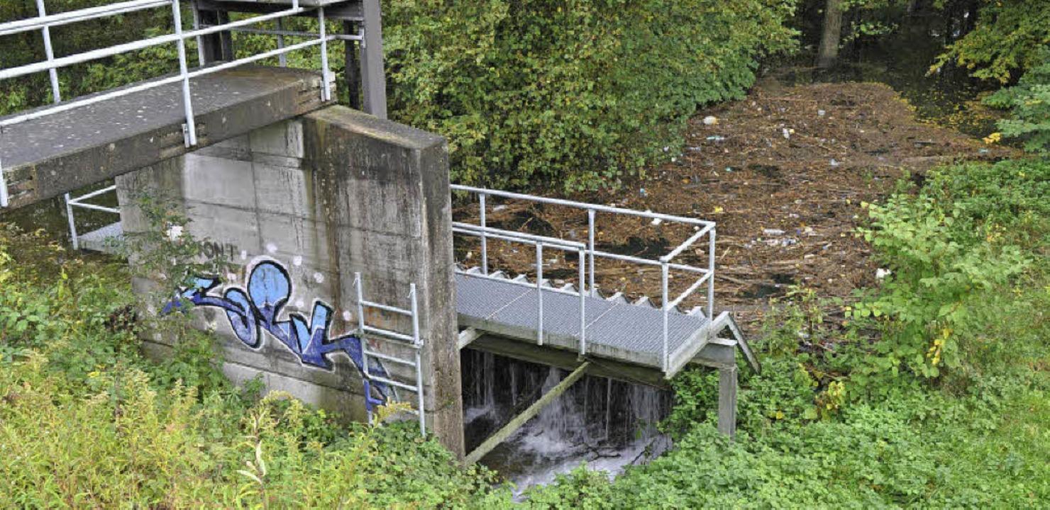 Das ist der Auslass vom bestehenden Ho... Hochwasserrückhaltebecken entstehen.   | Foto: Julius Steckmeister