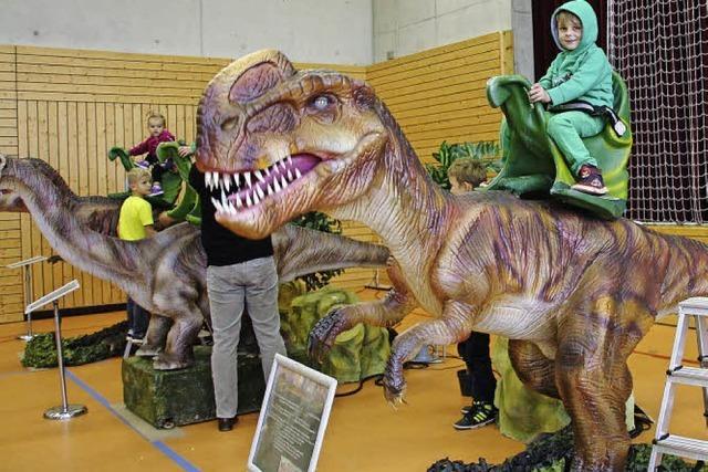 Unterwegs mit 17 Dinosauriern