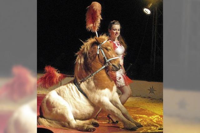 "Der ""Moskauer Staats-Circus"" begeistert in Köndringen nicht jeden Zuschauer"