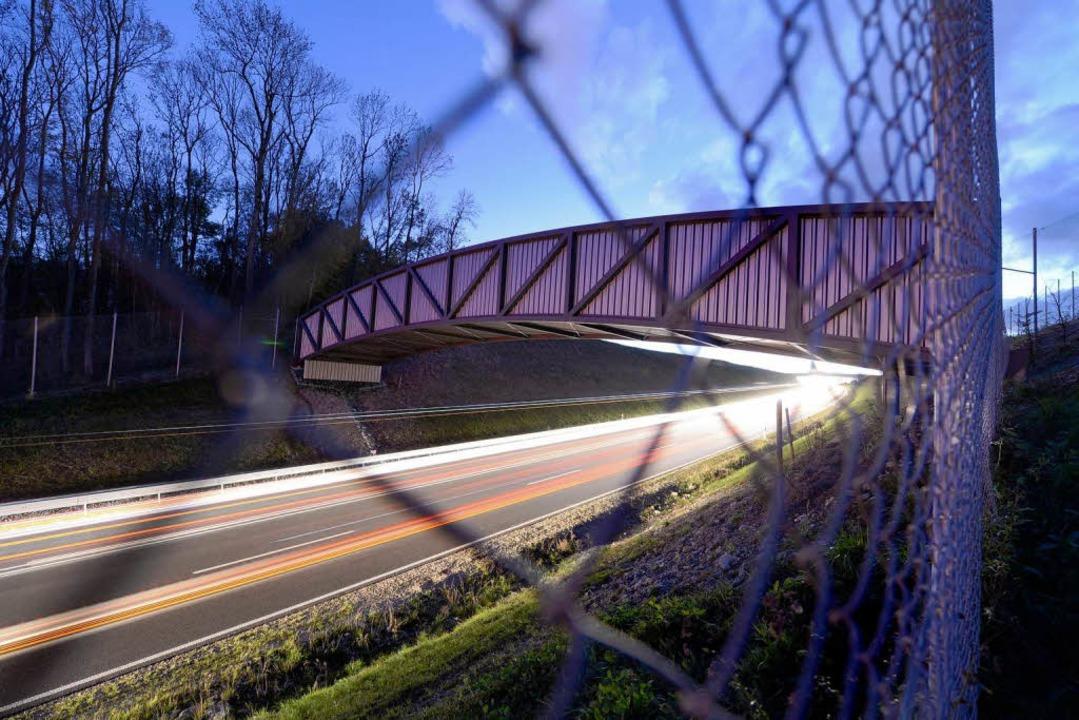 Eine der beiden Fledermausbrücken bei Dämmerung   | Foto: dpa