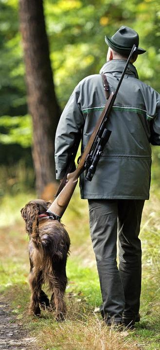 Ein Jäger mit Gewehr und Jagdhund im W...usszahlen für Rehböcke heraufgesetzt.   | Foto: dpa