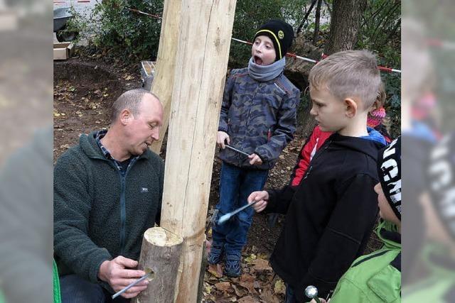 Was tun mit Holz und Schrauben?