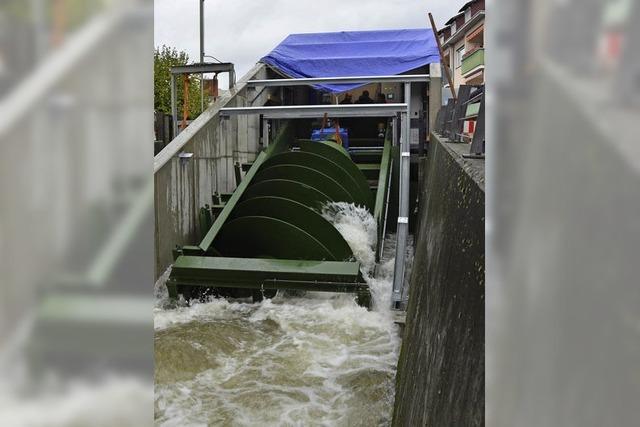 Schnecke gewinnt Strom am Kanal