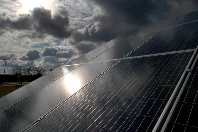 Rote Zahlen bei Freiburger Solarfirmen