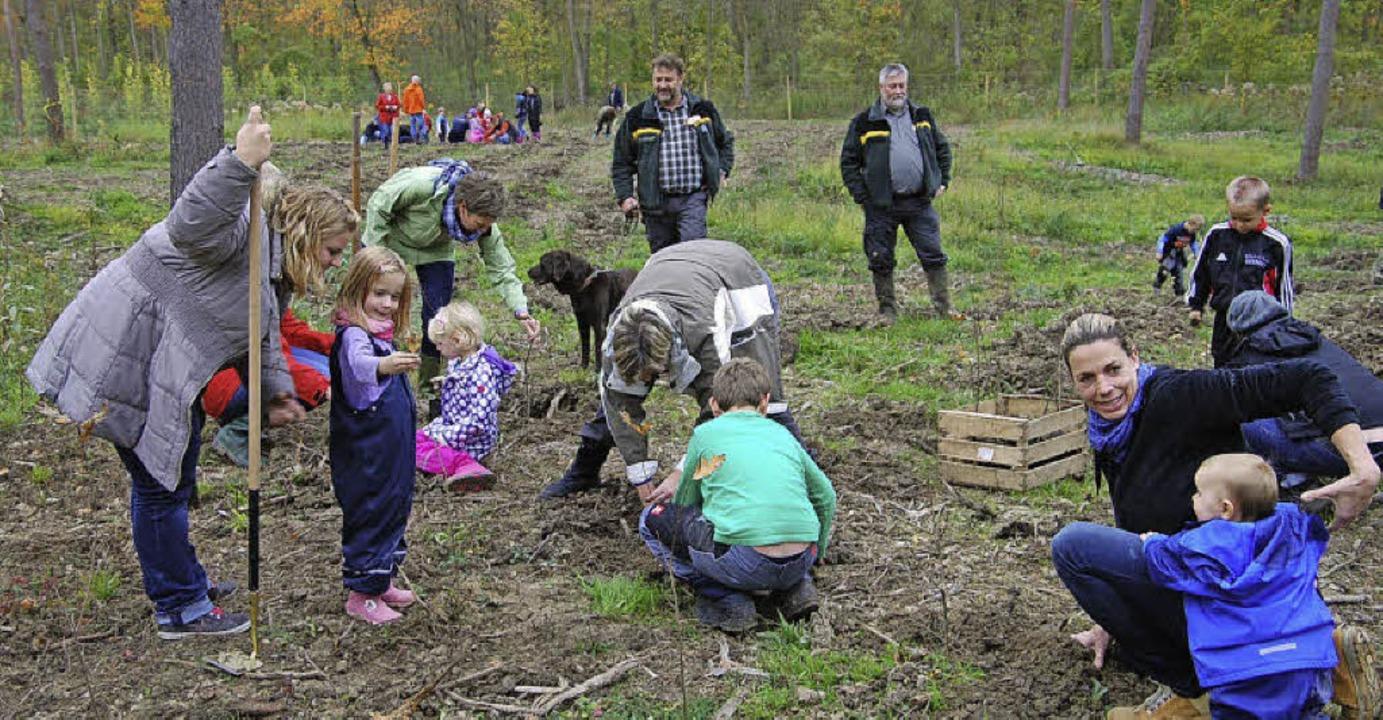 Gündlinger Kindergartenkinder,   Elter... Breisachs Revierförster Norbert Lust.  | Foto: hans-jochen voigt