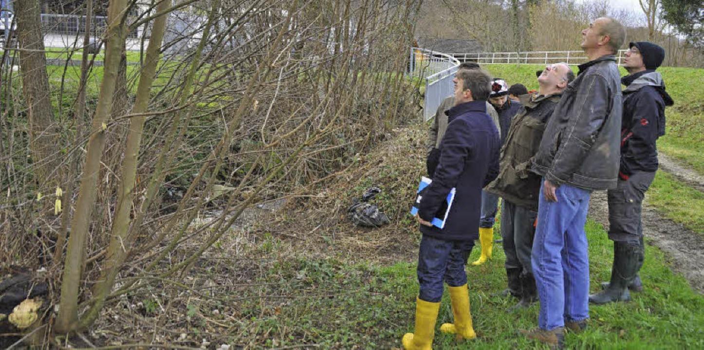 Bei einer Gewässerschau zu Beginn des ...rgebnis der Untersuchung vorgestellt.     Foto: Julius Steckmeister