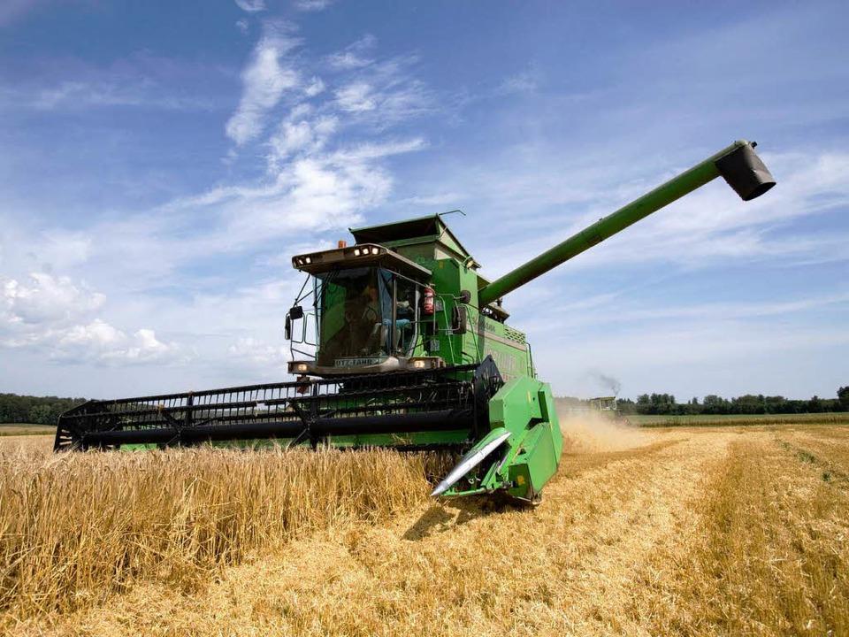Kleine und mittelgroße Höfe werden künftig stärker gefördert.  | Foto: dapd